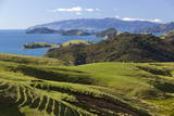 Coastline Looking North Towards Coromandel and Hauraki Gulf Photographic Print by  Stuart