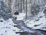 Cottage in a Forest in Winter Photographic Print by Marcus Lange
