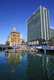 Harbour of Auckland, North Island, New Zealand, Pacific Photographic Print by  Michael