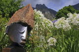 Statue with Agapanthus and Table Mountain Behind Photographic Print by  Eleanor