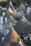 Rooftops of Traditional Trullos (Trulli) in Alberobello Photographic Print by  Martin