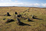 Prehistoric Ceremonial Lines of Stones Photographic Print by  David