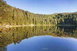 Hornisgrinde Mountain Reflecting in Mummelsee Lake Photographic Print by  Markus