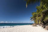 Anse Victorin, Fregate Island, Seychelles, Indian Ocean, Africa Photographic Print by  Sergio