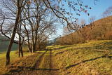 Country Road, Swabian Alb, Baden-Wurttemberg, Germany, Europe Photographic Print by  Jochen