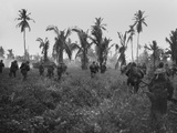 U.S. Marines in Pursuit of Retreating Japanese on Guam Island Photo