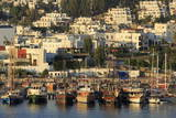 Boats in Bodrum, Turkey, Anatolia, Asia Minor, Eurasia Photographic Print by  Richard
