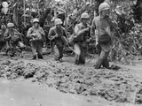 U.S. Marines Run Afoul of General Mud on Bougainville Island During World War 2 Fotografía
