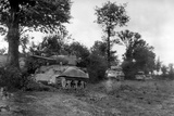Four U.S. Sherman Tanks Hiding in a Norman Hedgerow During the Battle of the Falaise Pocket Photo