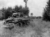 U.S. Light Tank Equipped with the 'Culin Hedgecutter' for Breaching the Norman Hedgerows Photo