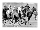 Polo Players, England Posters by Robert Hallam