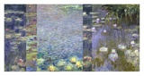 Waterlilies III Print by Monet Deco