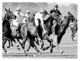 Polo Players, England Plakater af Robert Hallam