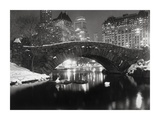 Bridge in Central Park, NYC, 1957 Plakater