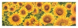 Field of Sunflowers Posters by Luca Villa