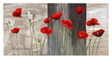 Country Poppies Prints by Jenny Thomlinson