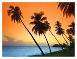 Caribbean, Antigua and Barbuda, Morris Point Reprodukcje autor Michele Falzone