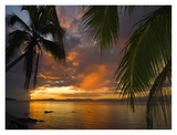 Sunset on Taveuni Island, Fiji Print by Michele Westmorland
