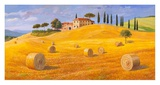 Colline in Toscana Prints by Adriano Galasso