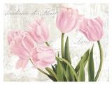 Academie des Fleurs Art by Jenny Thomlinson
