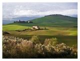 Tuscan Countryside Poster by Vadim Ratsenskiy