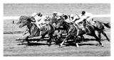 Horse Racing at Deauville, France Prints by Robert Hallam