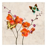 Orchids & Butterflies I Posters by Teo Rizzardi