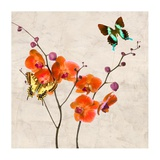 Orchids & Butterflies I Print by Teo Rizzardi
