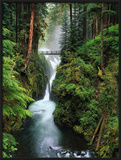 Sol Duc Falls Cascading Through Rainforest Framed Photographic Print by Mark Karrass