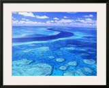 Australia's Great Barrier Reef Framed Photographic Print by Theo Allofs