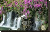 Floral Falls Stretched Canvas Print by Dennis Frates