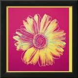 Daisy, c.1982 (Fuschia and Yellow) 高画質プリント : アンディ・ウォーホル
