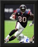 Andre Johnson 2010 Action Poster