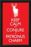 Keep Calm and Conjure a Patronus Charm Carry On Spoof Poster Print Print