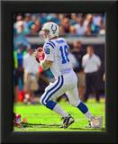 Peyton Manning 2010 Action Prints