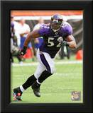 Ray Lewis 2010 Action Art