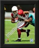 Larry Fitzgerald 2009 Posters