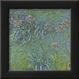 Jewelry Lilies Prints by Claude Monet