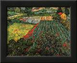 Field of Poppies, Saint-Remy, c.1889 Posters by Vincent van Gogh