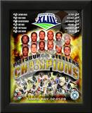 2008 Pittsburgh Steelers SuperBowl XLIII Champions Prints