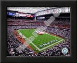 Reliant Stadium 2009 Prints
