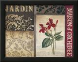 Belle Jardin I Poster by Kimberly Poloson