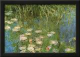 Water Lilies of the Orangerie as Giverny Posters por Claude Monet