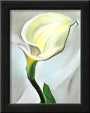 Calla Lily Turned Away, 1923 Posters by Georgia O'Keeffe