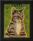 Tabby (grey) Poster by John Golden