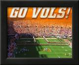 University of Tennessee-Neyland Stadium Prints
