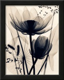 Lotus and Grasses Print by Judith Mcmillan