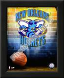 2009 New Orleans Hornets Prints