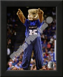 University of Kentucky Wildcats Mascot Print