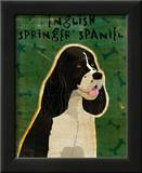 English Springer Spaniel (black and white) Posters by John Golden